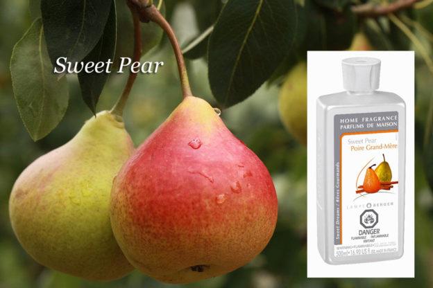 Sweet Pear Lampe Berger Anns Houston Tx