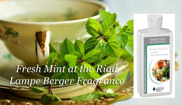Fresh Mint at the Riad Lampe Berger Anns Houston Tx